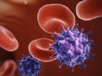 Eliminado el VIH en pacientes con leucemia tras el trasplante de células madre